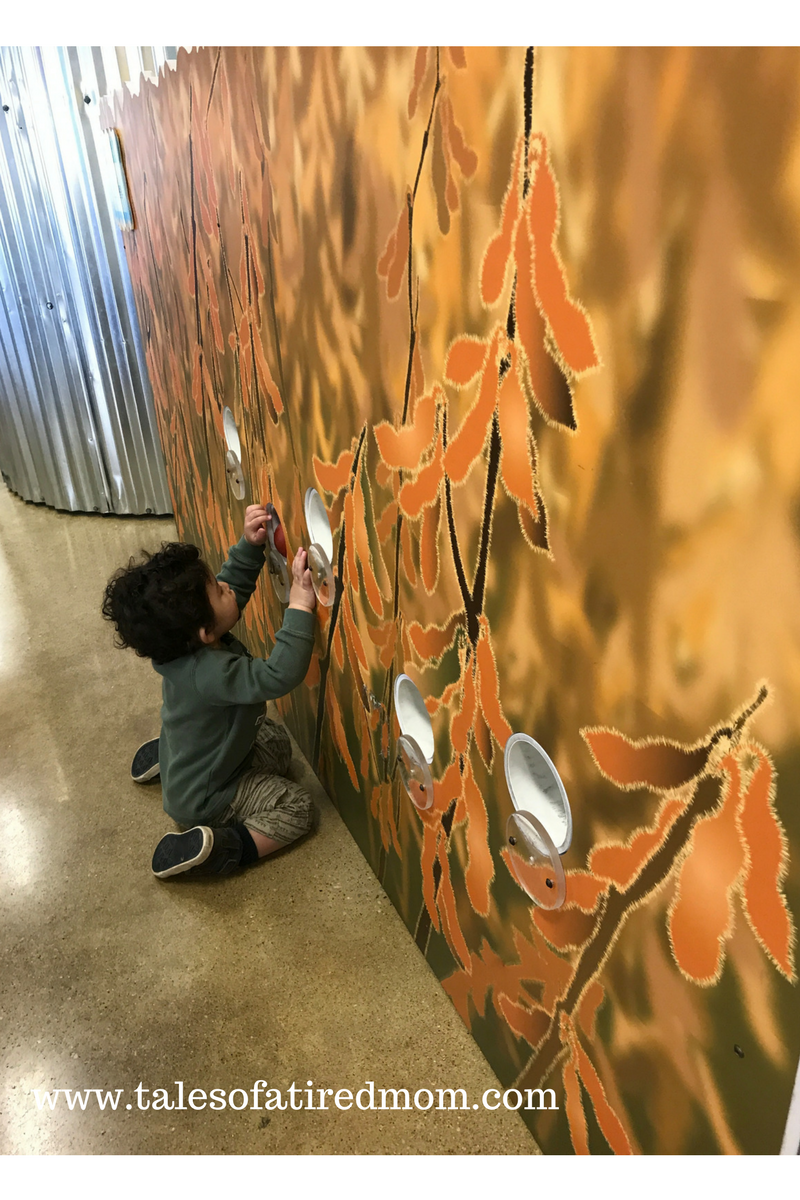 The Children's Museum of Richmond in Fredericksburg, Virginia made a great day trip and was the best pit stop ever with 2 small children on a long road trip.