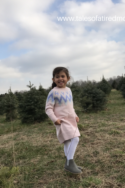 Our trip to a Christmas Tree Farm