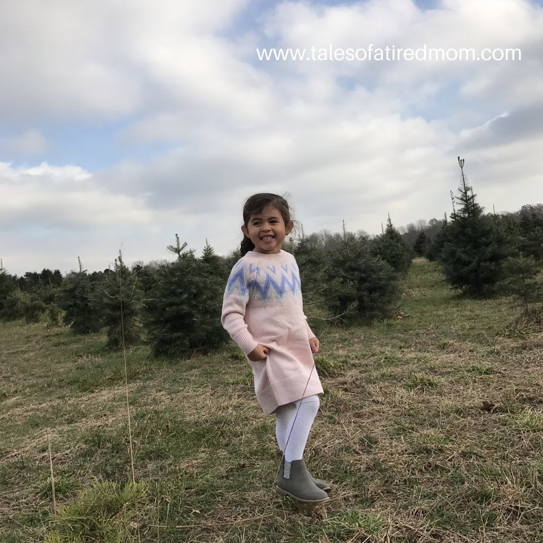 We have so many things we love to do to prepare for the holiday season. One of my favorite things is picking out a Christmas tree!